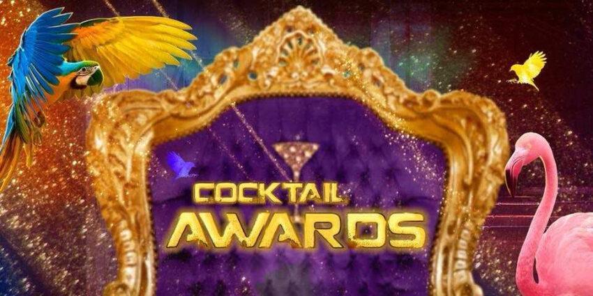 Inspirerende rolmodellen worden geëerd met eerste Cocktail Awards